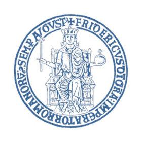 Università Napoli Federico II Logo